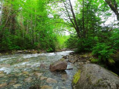 Exploring Shannon Falls Provincial Park